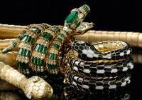 出包的珠寶品牌那麼多,為什麼只有寶格麗的蛇頭包大獲成功?