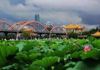 洪湖公園!