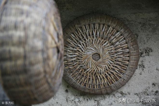 50歲男子留守秦嶺大山養土蜂,1斤蜂蜜能賣50來元,年收入兩萬多