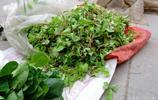 農村老人早市擺攤稀罕菜2元一捆便宜賣,原因是沒擦雪花膏