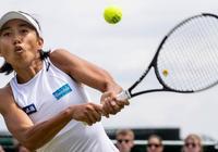 7月9日溫網女單1/4決賽賽程 張帥戰哈勒普爭進4強 直播預告