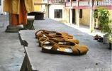 佛教常識:出家人的僧鞋為什麼有六個洞?