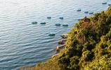 撫仙湖的朝與暮