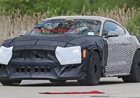 全新Mustang Shelby GT500諜照曝光 或北美車展亮相
