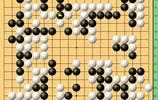動圖棋譜-範廷鈺中盤勝連笑 謝爾豪半目勝檀嘯