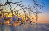 興凱湖之旅,一片生機盎然的景色