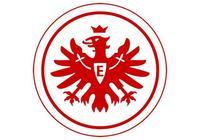 體育魅力無處不在:德甲職業聯賽法蘭克福足球俱樂部