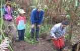 村民挖出異洞後狗吠不止,土中異物逃跑速度相當驚人