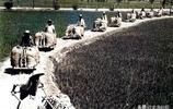 80年代老照片:憑票吃飯,以前農村要交公糧,現在種田都有補貼了