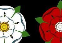 玫瑰戰爭!