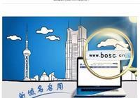 市值千億的上海銀行,300元撿漏bosc.cn