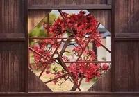 中國窗:窗外歲月,窗里人生