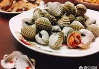 有哪些你吃一次就立馬愛上的海鮮?