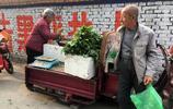 70歲老媽媽走二十公里路進城賣蒲公英 要給老伴看病 我聽完流淚了