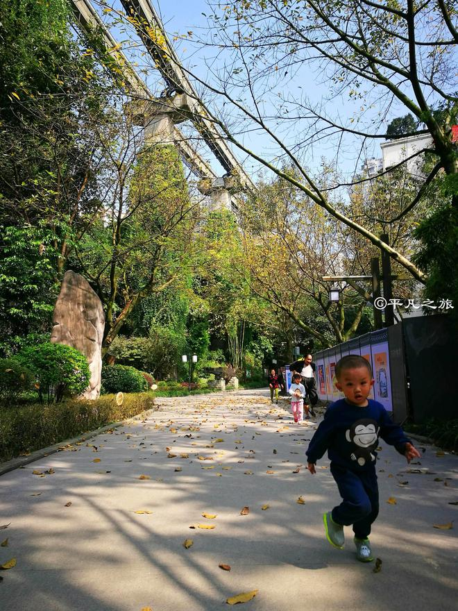 二號線旁這個公園,下月將開滿櫻花,成為重慶最吸引人的地方之一