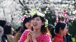 若你覺得武大櫻花已經迷醉,請看日本北海道櫻花節盛景!後6張