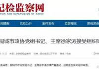 安徽桐城市政協主席徐家濤接受組織審查 此前該市副主席王靖華被查