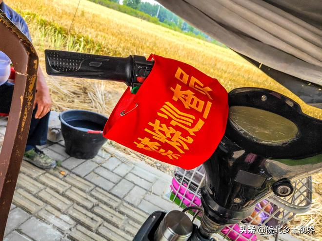 皖北農村麥收季節即將到來,鏡頭記錄11張圖,看看農民都忙啥