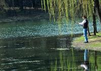 新手釣魚調漂,只需掌握這四個訣竅,釣魚小白速成調釣高手