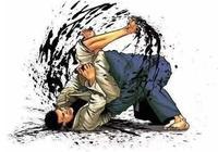 揭祕MMA綜合格鬥的必殺技,巴西柔術!