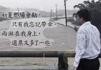 臺灣這場豪雨 帶來好一齣官場現形記!主演全是綠營名角!