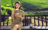 茶田裡的女王大人-陳喬恩