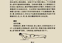 少林鐵臂功(五)