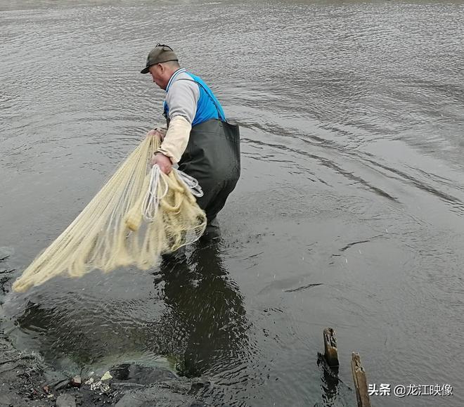 何家溝裡,他竟然撈出多條一斤重的大鯽魚,是溝水更清了嗎