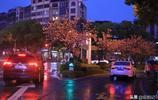 萍鄉長平:菱角村的春天