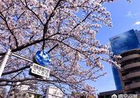 老婆要帶孩子去日本旅遊,該不該阻止?