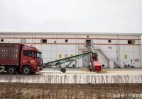 昊王米業:寧夏大米的全產業鏈之路