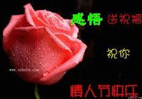 2月14日,祝你情人節快樂