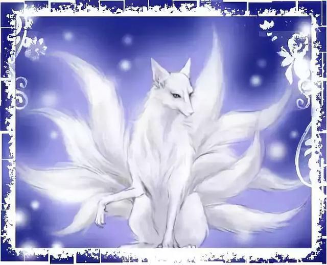 謹以此文,為你取暖:九尾狐的故事