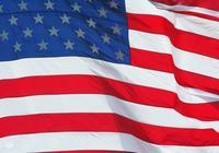 請問美國的民族組成成份都叫什麼名?