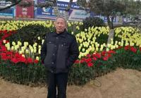 魏巍:遊渭南西海公園組詩