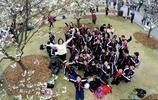 上海:櫻花綻放百媚千嬌 迎來最佳觀賞時期