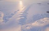 遙遠的南極洲,領略冰雪世界之美
