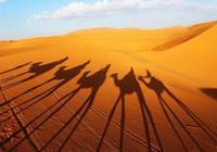 帶上她去撒哈拉沙漠打高爾夫吧——《嶺南書香》專訪小說《愛在開羅時光》作者林健鋒