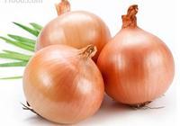 黃洋蔥好吃還是紫洋蔥好吃?