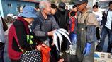 逛青島早市 新鮮的鼓眼魚15一斤 只看不買 原來我是不會做