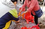 大集海鮮市場,一5元一斤小魚受歡迎 ,顧客:海鮮比水果還便宜!