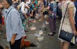 農村家禽市場,好熱鬧