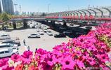 美不勝收,這裡成為了西部網紅城市最美的區域
