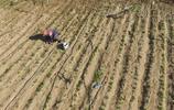 遼寧義縣:抗旱保生產