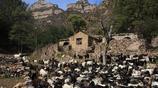 中國人口最少的村子 全村只有9個人,房子太破了