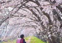 別人家的爸爸:日本攝影師跟拍女兒三年,現實版宮崎駿漫畫!