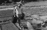 70多年前的老照片,解決了農村80後20多年未想明白的問題