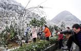 其實廣東人不用出省也能看到美麗的白雪,離廣州只有230公里