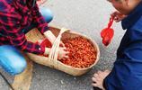 街拍:三峽宜昌,農民戴著草帽賣櫻桃 商家賣桑葚子高掛廉價招牌