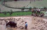改革初的農村模樣